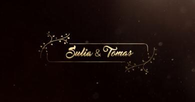Golden Titles For Premiere pro cc templates
